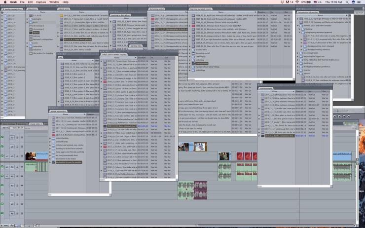 FCP screenshot- folders and sub folders and sub sub folders